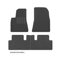 2017 Tesla Model 3 custom floor mats